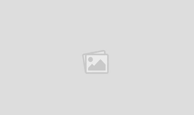 Karaman'da Bu Nikahda Çam Fidanı Dağıtıldı